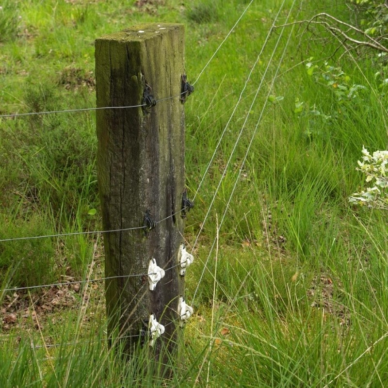Agrovete - Isolador W Branco para Corda 3