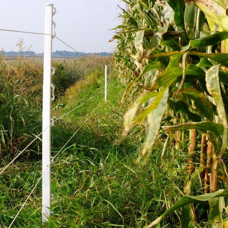 Agrovete - Poste Vario Branco 1m - 10 uni. 6
